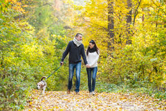 Young couple with dog on a walk in autumn forest Stock Image