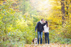 Young couple with dog on a walk in autumn forest Royalty Free Stock Photos