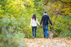 Young couple with dog on a walk in autumn forest Stock Photography