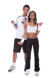 Young couple doing fitness Royalty Free Stock Images