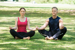 Couple Doing Yoga In Park. Young Couple Doing Yoga In Park At Morning stock image