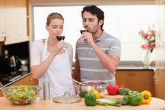 Young couple drinking a glass of wine Royalty Free Stock Image