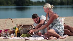 Young couple drinking red wine on picnic stock footage