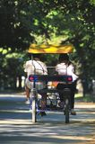 Young couple driving tandem bike in park Royalty Free Stock Photography