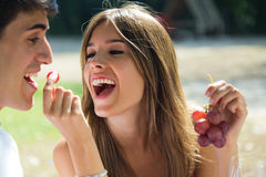 Young couple eating grapes on romantic picnic in countryside. Royalty Free Stock Photos