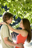A young couple embracing under a tree Royalty Free Stock Photography