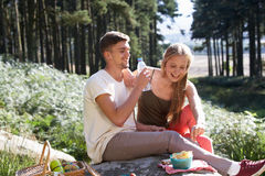 Young Couple Enjoying Picnic In Countryside Stock Photo