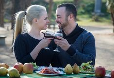 Loving young couple drinking wine and talking on picnic Royalty Free Stock Photo
