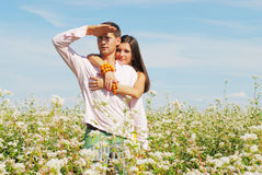 Young couple on field of flowers. In sunny day Stock Image
