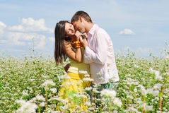 Young couple on field of flowers. In sunny day Stock Photos