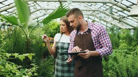 Young couple work in garden center. Attractive man cheking flowers and woman using tablet computer during working in. Young couple florists work in garden center Stock Images
