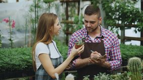 Young couple florists work in garden center. Attractive man cheking flowers and woman using tablet computer during. Young couple florists work in garden center Stock Image