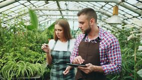 Young couple work in garden center. Attractive man cheking flowers and woman using tablet computer during working in. Young couple florists work in garden center Stock Photography