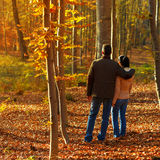 Young couple in forest while autumn Stock Images