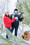 Young couple in forest with Christmas decorations Royalty Free Stock Image
