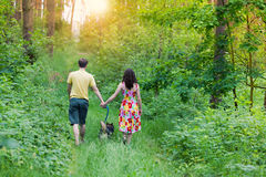 Young couple in the forest Royalty Free Stock Photos