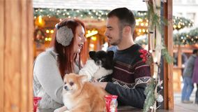 Young Couple Having Fun Outdoors At Christmas Time. They Are Drinking Mulled-Wine And Holding Cutie Dogs. Christmas Time stock video