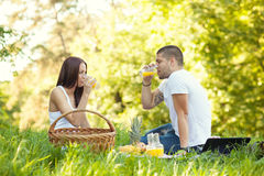 Young couple having a picnic Stock Images