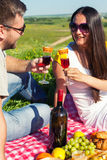 Young couple having picnic Stock Photography