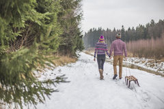 Young couple having a slaigh winter forest walk Royalty Free Stock Image