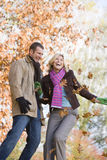 Young couple having throwing leaves in the air Stock Photography