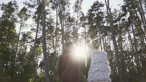 Young couple hold the hands and walking in a pine forest in the background of sunshine. Couple spends leisure time stock video