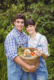 Young couple holding a basket of freshly harvested vegetables Stock Image