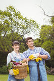 Young couple holding a basket of freshly harvested vegetables Stock Images
