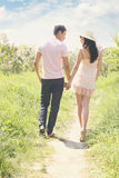 Young couple  holding hands, tinted. Young couple walking in the park holding hands Stock Photography