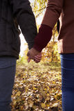 Young Couple Holding Hands On Walk In Autumn Woodland Stock Image