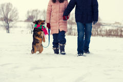 Young couple holding hands walking with dog Royalty Free Stock Image