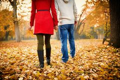 Young couple walking in park in autumn stock images