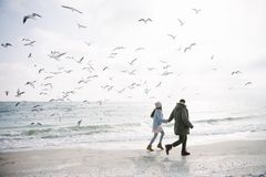young couple holding hands and walking on winter sea shore and looking royalty free stock image