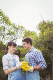 Young couple holding a sapling Stock Images