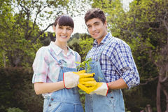 Young couple holding a sapling Royalty Free Stock Photos