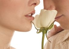 Young couple holding a white rose Stock Photos
