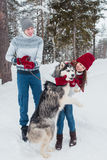 Young couple with a Husky dog walking in winter park, Man and woman hugging a dog. Young couple with a Husky dog walking in winter park, Man and women hugging a Royalty Free Stock Photography