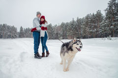 Young couple with a Husky dog walking in winter park, man and woman playing and having fun with dog. Royalty Free Stock Images