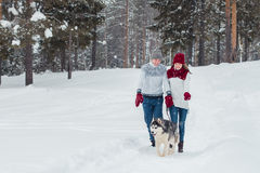 Young couple with a Husky dog walking in winter park, man and woman playing and having fun with dog. Royalty Free Stock Photography