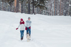 Young couple with a Husky dog walking in winter park, man and woman playing and having fun with dog. Royalty Free Stock Photo