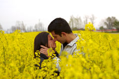 Young Couple In The Field Royalty Free Stock Photos
