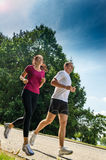 Young couple jogging in a park Stock Images
