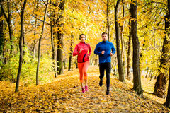 Friends jogging in autumn nature royalty free stock image