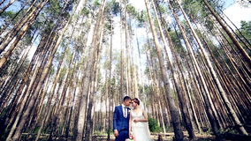Young couple, just married in love stading under the huge trees. Looking at each other. stock footage