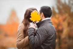 Young couple kissing, hiding faces with autumn yellow maple leave. Royalty Free Stock Photos