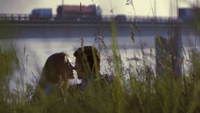 Young couple kissing romantically while relaxing in tall grass stock video