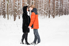 Young couple kissing on winter day Royalty Free Stock Photography