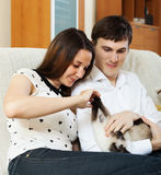 Young couple with kitten Royalty Free Stock Photos