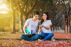 Couple listening music from mobile with headphone in the park. Young couple listening music from mobile with headphone in the park Stock Photography