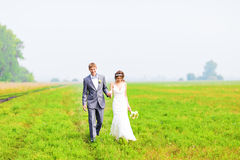 A young couple in love bride and groom, wedding day in summer. Enjoy a moment of happiness and love in a  field. Bride Stock Photos